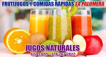 Frutijugos-y-Comidas-Rápidas-La-Palomera